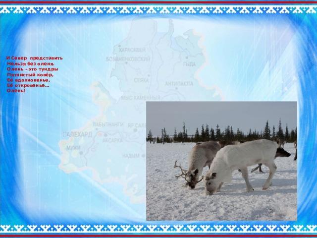 И Север представить  Нельзя без оленя.  Олень – это тундры  Пятнистый ковёр,  Её вдохновенье,  Её откровенье…  Олень!