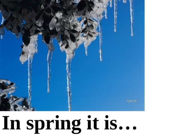 In spring it is…