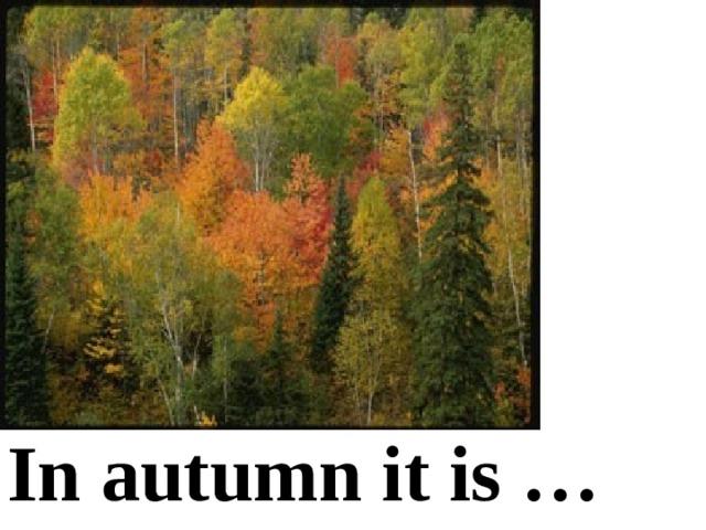 In autumn it is …