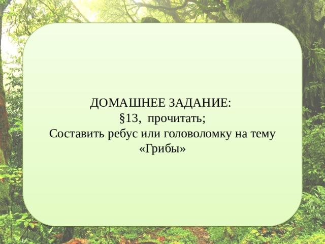 ДОМАШНЕЕ ЗАДАНИЕ: §13, прочитать; Составить ребус или головоломку на тему «Грибы»