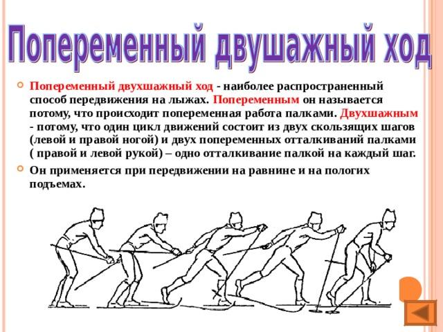 Попеременный двухшажный ход - наиболее распространенный способ передвижения на лыжах. Попеременным он называется потому, что происходит попеременная работа палками. Двухшажным - потому, что один цикл движений состоит из двух скользящих шагов (левой и правой ногой) и двух попеременных отталкиваний палками ( правой и левой рукой) – одно отталкивание палкой на каждый шаг. Он применяется при передвижении на равнине и на пологих подъемах.