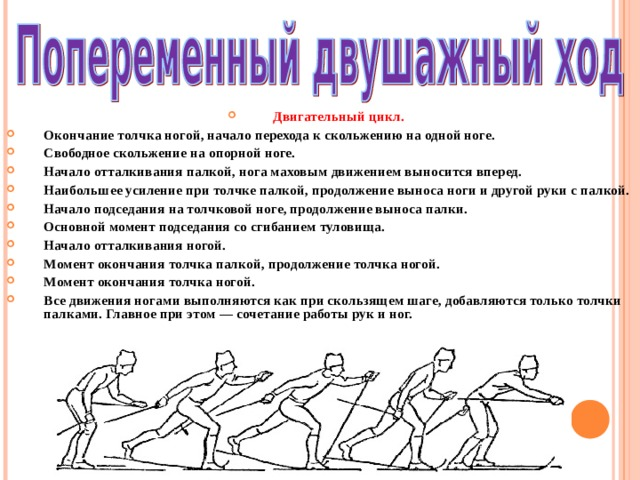 Двигательный цикл. Окончание толчка ногой, начало перехода к скольжению на одной ноге. Свободное скольжение на опорной ноге. Начало отталкивания палкой, нога маховым движением выносится вперед. Наибольшее усиление при толчке палкой, продолжение выноса ноги и другой руки с палкой. Начало подседания на толчковой ноге, продолжение выноса палки. Основной момент подседания со сгибанием туловища. Начало отталкивания ногой. Момент окончания толчка палкой, продолжение толчка ногой. Момент окончания толчка ногой. Все движения ногами выполняются как при скользящем шаге, добавляются только толчки палками. Главное при этом — сочетание работы рук и ног.