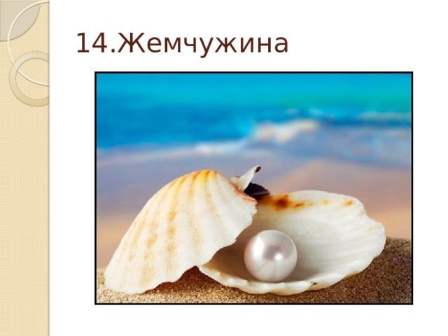 14.Жемчужина