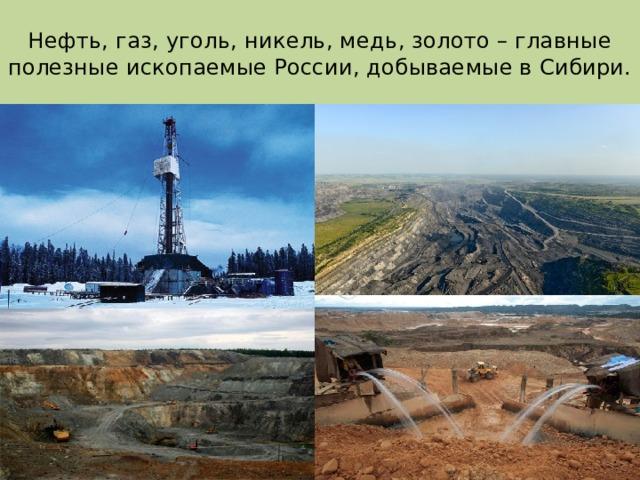 Нефть, газ, уголь, никель, медь, золото – главные полезные ископаемые России, добываемые в Сибири.