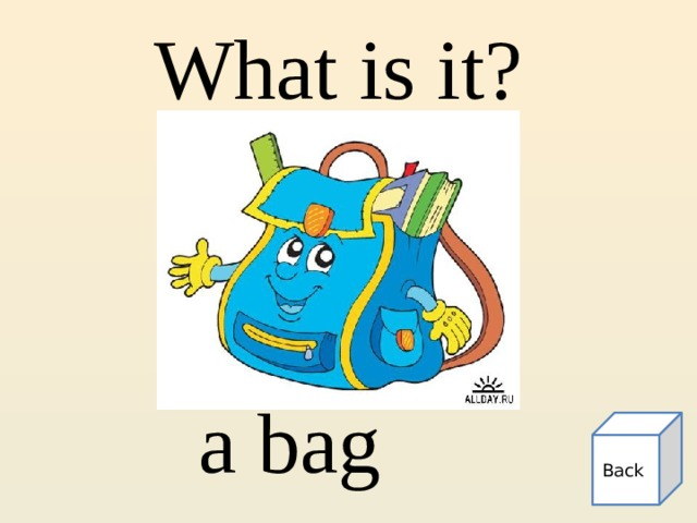 What is it? a bag Back