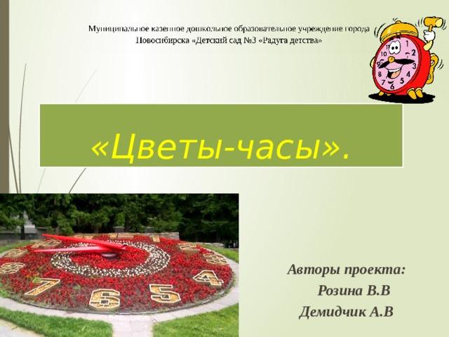 «Цветы-часы». Авторы проекта:  Розина В.В Демидчик А.В