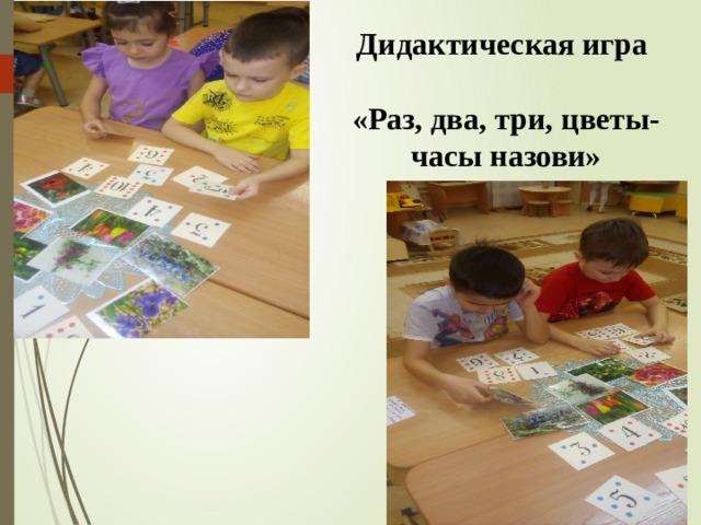 Дидактическая игра  «Раз, два, три, цветы-часы назови»