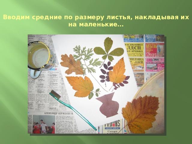 Вводим средние по размеру листья, накладывая их на маленькие…