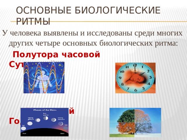 Основные биологические ритмы У человека выявлены и исследованы среди многих других четыре основных биологических ритма:  Полутора часовой  Суточный  Месячный  Годовой