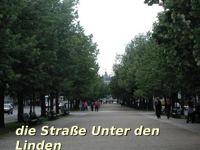die Stra ße Unter den Linden