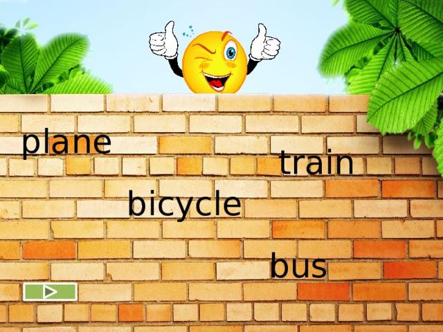 plane train bicycle bus