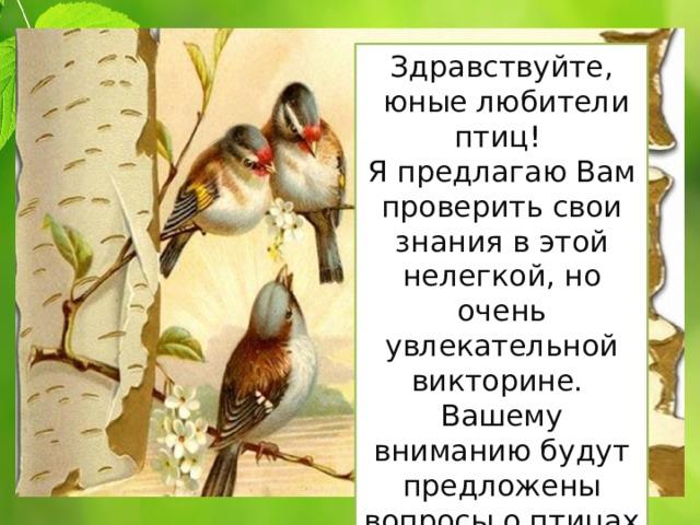 Здравствуйте,  юные любители птиц! Я предлагаю Вам проверить свои знания в этой нелегкой, но очень увлекательной викторине. Вашему вниманию будут предложены вопросы о птицах и обо всём, что с ними связано.