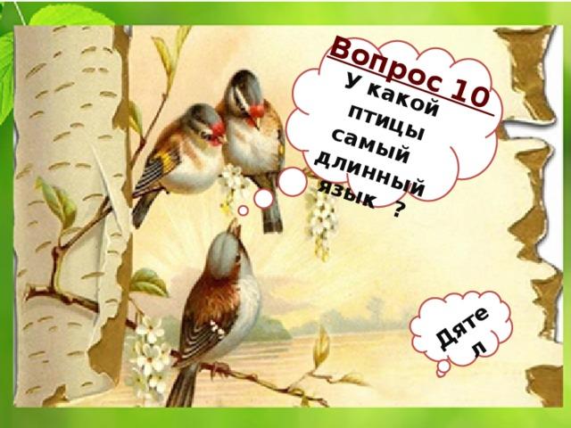 У какой птицы самый Вопрос 10 длинный Дятел язык ?