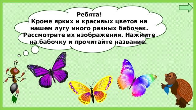 Ребята! Кроме ярких и красивых цветов на нашем лугу много разных бабочек. Рассмотрите их изображения. Нажмите на бабочку и прочитайте название.