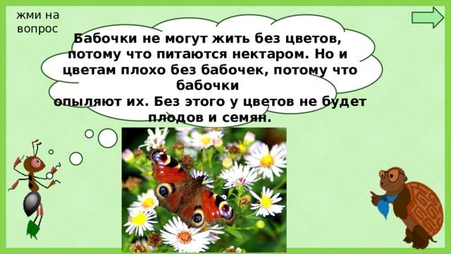 жми на вопрос Бабочки не могут жить без цветов, потому что питаются нектаром. Но и цветам плохо без бабочек, потому что бабочки опыляют их. Без этого у цветов не будет плодов и семян. Ребята! Так почему же нельзя рвать цветы на лугу и ловить бабочек?