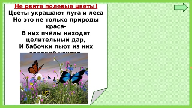 Не рвите полевые цветы! Цветы украшают луга и леса Но это не только природы краса- В них пчёлы находят целительный дар, И бабочки пьют из них сладкий нектар.