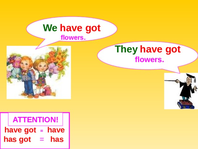 We  have got  flowers. They  have got  flowers.  ATTENTION ! have got  =  have has got = has