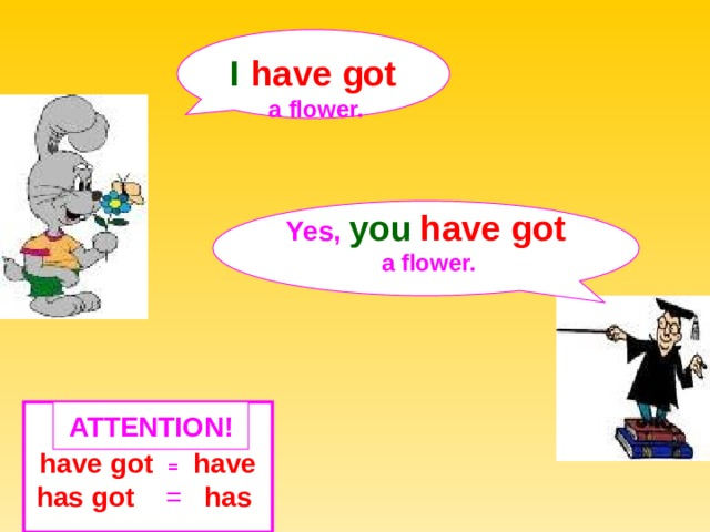 I  have got  a  flower. Yes,  you  have got  a  flower.  ATTENTION ! have got  =  have has got = has