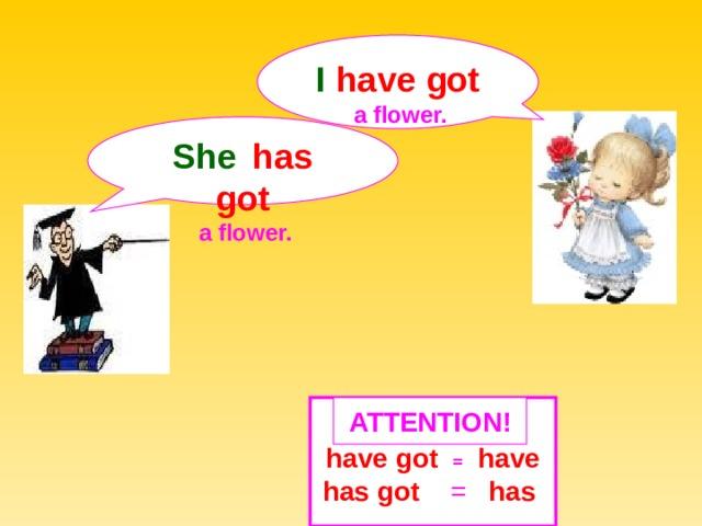 I  have got  a  flower. She   has got  a  flower.  ATTENTION ! have got  =  have has got = has