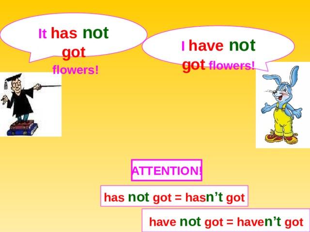 It  has not  got  flowers! I  have not  got  flowers! ATTENTION ! has not got = has n't got have not got = have n't got