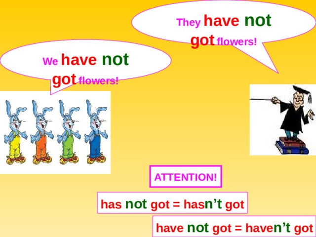 They have not got  flowers! We have not got  flowers! ATTENTION ! has not got = has n't got have not got = have n't got