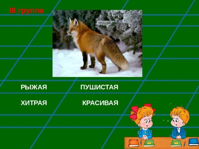III группа РЫЖАЯ   ПУШИСТАЯ  ХИТРАЯ КРАСИВАЯ