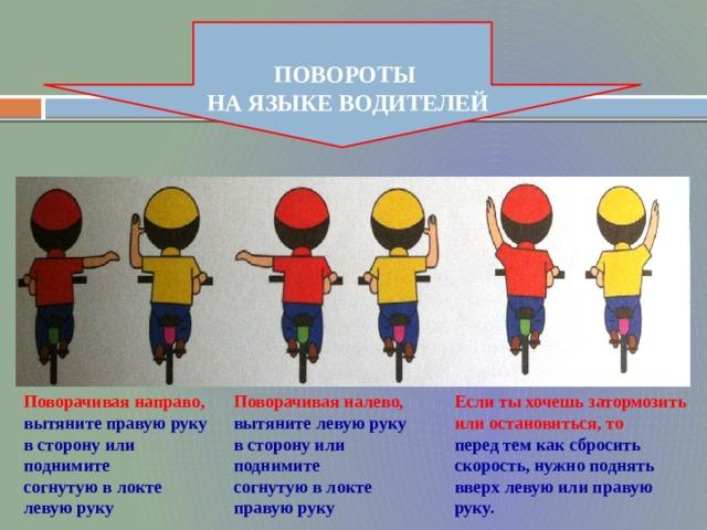 ПОВОРОТЫ НА ЯЗЫКЕ ВОДИТЕЛЕЙ Поворачивая направо, Поворачивая налево, Если ты хочешь затормозить или остановиться, то вытяните правую руку вытяните левую руку перед тем как сбросить скорость, нужно поднять вверх левую или правую руку. в сторону или поднимите в сторону или поднимите согнутую в локте левую руку согнутую в локте правую руку