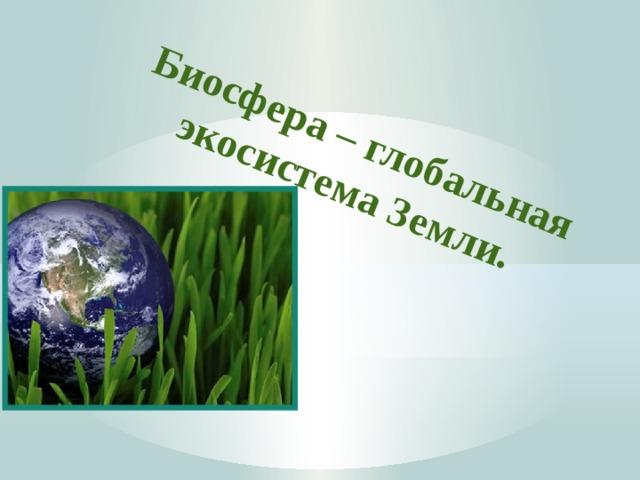 Биосфера – глобальная экосистема Земли.