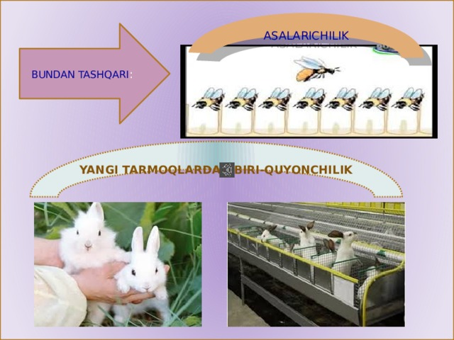 ASALARICHILIK BUNDAN TASHQARI : YANGI TARMOQLARDAN BIRI-QUYONCHILIK