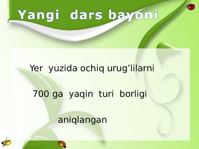 Yer yuzida ochiq urug'lilarni  700 ga yaqin turi borligi  aniqlangan
