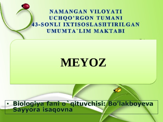 MEYOZ