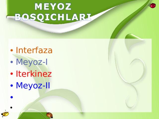 Interfaza Meyoz-I Iterkinez Meyoz-II