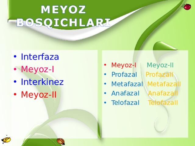 Interfaza Meyoz-I Interkinez Meyoz-II Meyoz-I  Meyoz-II ProfazaI ProfazaII MetafazaI MetafazaII AnafazaI AnafazaII TelofazaI TelofazaII