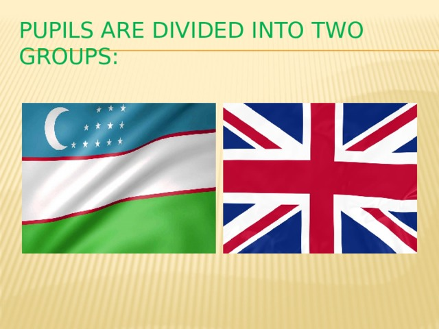 Pupils are divided into two groups: