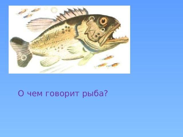 О чем говорит рыба?