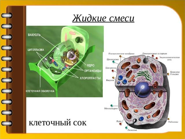 Жидкие смеси клеточный сок