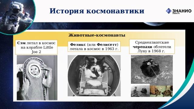 История космонавтики Животные-космонавты Среднеазиатские черепахи облетели Луну в 1968 г.  Сэм летал в космос  на корабле Little Joe 2 Феликс (или Фелисетт ) летала в космос в 1963 г.