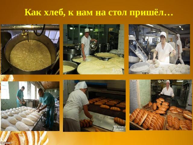 Как хлеб, к нам на стол пришёл…