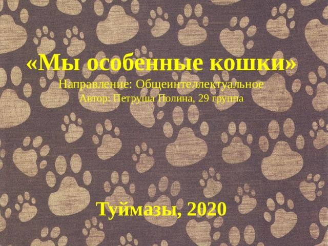 «Мы особенные кошки» Направление: Общеинтеллектуальное Автор: Петруша Полина, 29 группа Туймазы, 2020