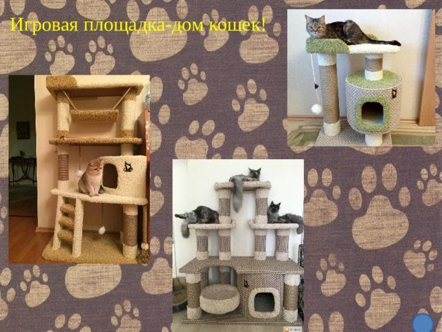 Игровая площадка-дом кошек!