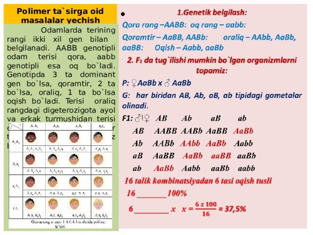 Polimer ta`sirga oid masalalar yechish  1.Genetik belgilash: Qora rang –AABB: oq rang – aabb: Qoramtir – AaBB, AABb: oraliq – AAbb, AaBb, aaBB: Oqish – Aabb, aaBb 2. F 1 da tug`ilishi mumkin bo`lgan organizmlarni topamiz: P: ♀ AaBb x ♂ AaBb G: har biridan AB, Ab, aB, ab tipidagi gametalar olinadi . F1: ♂\♀ AB Ab aB ab  AB AABB AABb AaBB AaBb  Ab AABb AAbb  AaBb Aabb  aB AaBB AaBb  aaBB aaBb  ab AaBb Aabb aaBb aabb  16 talik kombinatsiyadan 6 tasi oqish tusli  16 _______100%  6 ________ x x = = 37,5%  Odamlarda terining rangi ikki xil gen bilan belgilanadi. AABB genotipli odam terisi qora, aabb genotipli esa oq bo`ladi. Genotipda 3 ta dominant gen bo`lsa, qoramtir, 2 ta bo`lsa, oraliq, 1 ta bo`lsa oqish bo`ladi. Terisi oraliq rangdagi digeterozigota ayol va erkak turmushidan terisi oraliq rangli farzandlar tug`ilishi ehtimoli necha foiz bo`ladi?