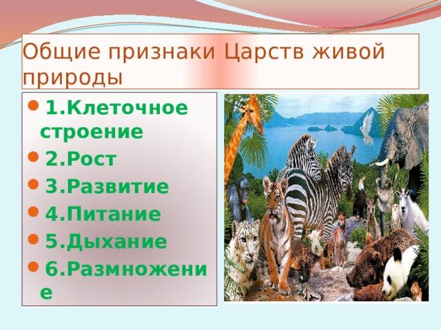 Общие признаки Царств живой природы