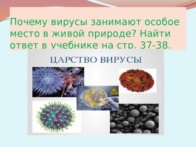 Почему вирусы занимают особое место в живой природе? Найти ответ в учебнике на стр. 37-38.