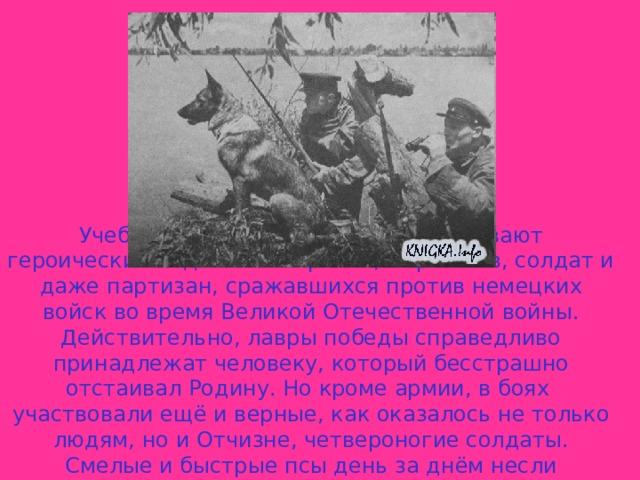 Учебники истории лаконично описывают героические подвиги генералов, маршалов, солдат и даже партизан, сражавшихся против немецких войск во время Великой Отечественной войны. Действительно, лавры победы справедливо принадлежат человеку, который бесстрашно отстаивал Родину. Но кроме армии, в боях  участвовали ещё и верные, как оказалось не только людям, но и Отчизне, четвероногие солдаты. Смелые и быстрые псы день за днём несли постовую, подрывную, связную,  санитарную и даже противотанковую службу.