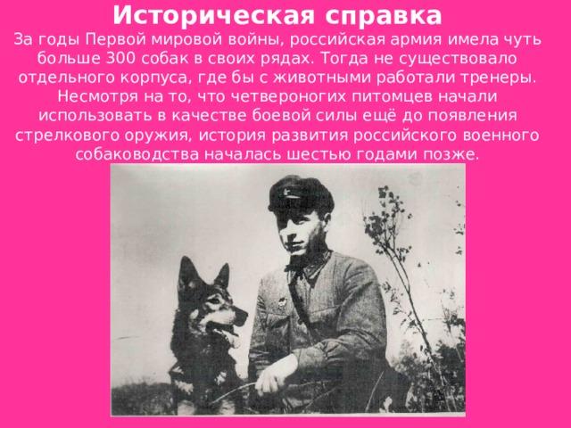 Историческая справка  За годы Первой мировой войны, российская армия имела чуть больше 300 собак в своих рядах. Тогда не существовало отдельного корпуса, где бы с животными работали тренеры. Несмотря на то, что четвероногих питомцев начали использовать в качестве боевой силы ещё до появления стрелкового оружия, история развития российского военного собаководства началась шестью годами позже.