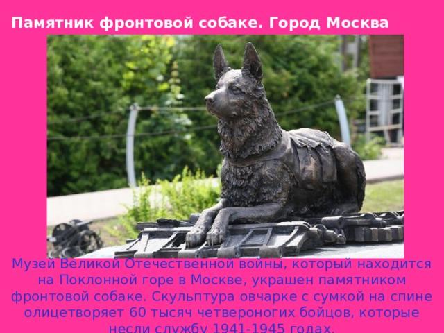 Памятник фронтовой собаке .  Город Москва Музей Великой Отечественной войны, который находится на Поклонной горе в Москве, украшен памятником фронтовой собаке. Скульптура овчарке с сумкой на спине олицетворяет 60 тысяч четвероногих бойцов, которые несли службу 1941-1945 годах.