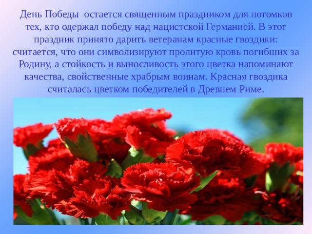 День Победы остается священным праздником для потомков тех, кто одержал победу над нацистской Германией. Вэтот праздник принято дарить ветеранам красные гвоздики: считается, что они символизируют пролитую кровь погибших за Родину, а стойкость и выносливость этого цветка напоминают качества, свойственные храбрым воинам. Красная гвоздика считалась цветком победителей вДревнем Риме.