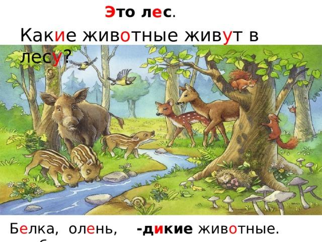 Э то л е с . Как и е  жив о тные жив у т в лес у ? -д и кие жив о тные. Б е лка, ол е нь, каб а н