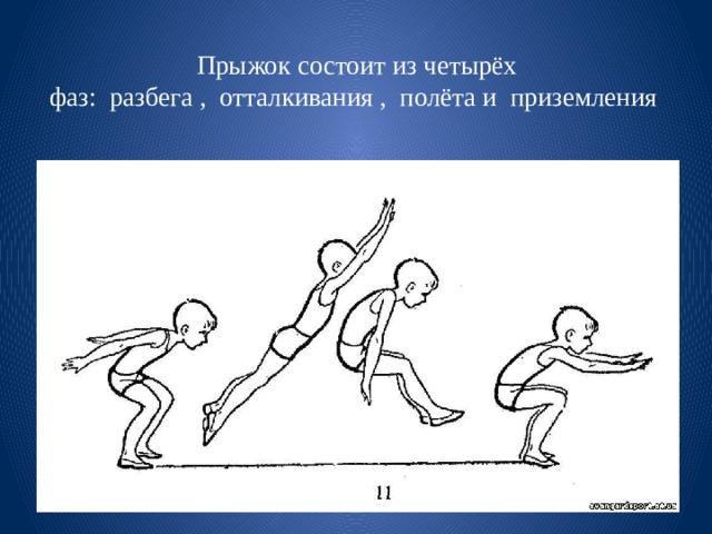 Прыжок состоит из четырёх фаз:разбега,отталкивания,полётаиприземления