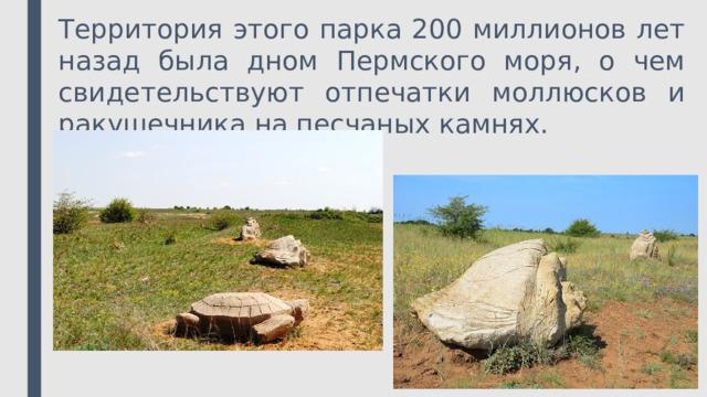 Территория этого парка 200 миллионов лет назад была дном Пермского моря, о чем свидетельствуют отпечатки моллюсков и ракушечника на песчаных камнях.